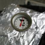 Kerntemperatur Fisch