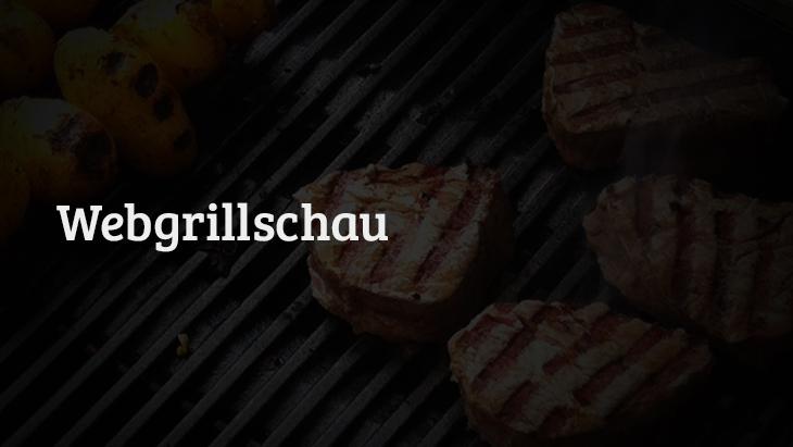 Enders Lavastein Gasgrill Illinois : Webgrillschau #11 grillen im web chefgrill